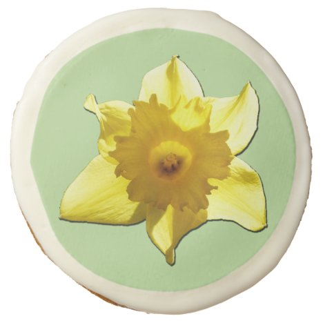 Happy Easter! Yellow Trumpet Daffodil 1.2.g Sugar Cookie