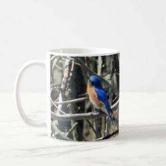 Happy Eastern Bluebird Mug