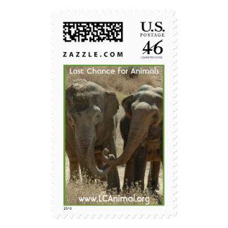 Happy Elephants Postage Stamps