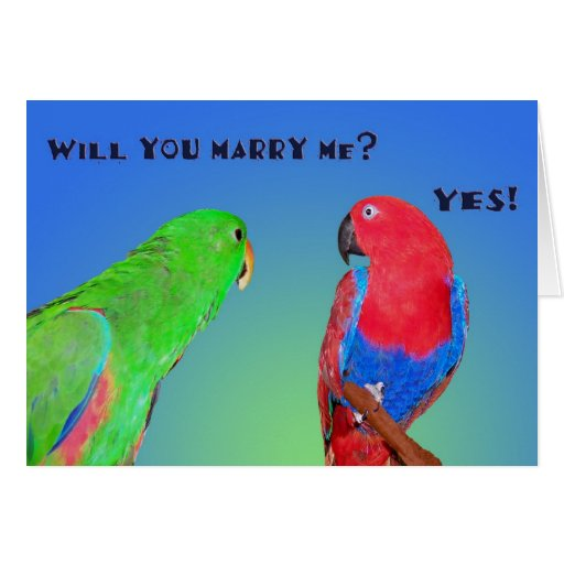 Happy Engagement Greeting Cards