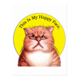 Happy Face cat Postcard