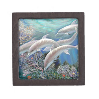 Happy_Family_-_Dolphins_Are_Awesome.JPG Jewelry Box