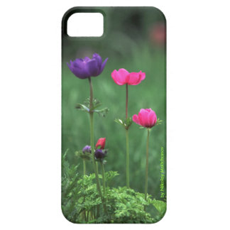 HAPPY FAMILY. Moltchanoph Inc. iPhone 5 Cover