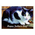 Happy Father's Day black and white cat card