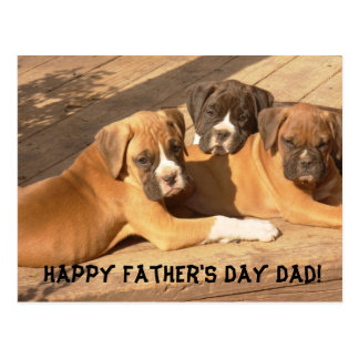 Happy Father's Day Dad Boxer greeting card Post Cards