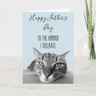 Happy Father's Day  From Cat To Human I Funny Card
