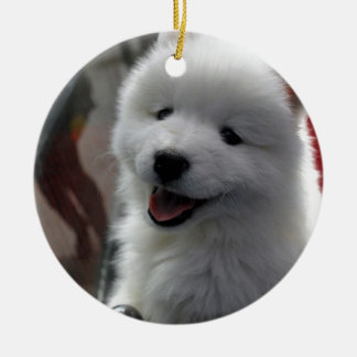 Happy Fluffy White Dog Ceramic Ornament