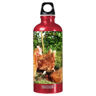 Happy Free range ex-battery chickens Aluminum Water Bottle