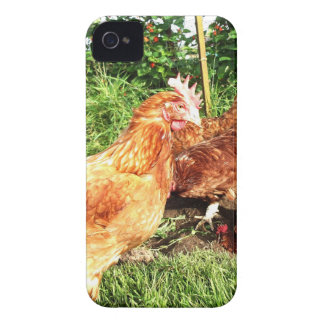 Happy Free range ex-battery chickens iPhone 4 Cover