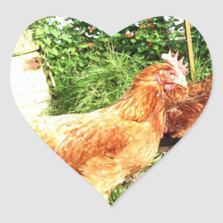 Happy Free range ex-battery chickens Heart Sticker