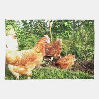 Happy Free range ex-battery chickens Kitchen Towel