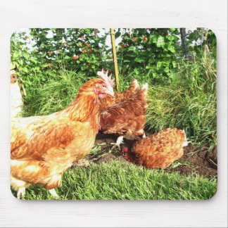 Happy Free range ex-battery chickens Mouse Pad