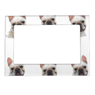 Happy French Bulldog dog Picture Frame Magnets