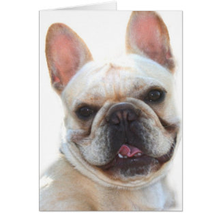 Happy French Bulldog greeting card