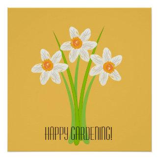 Happy Gardening White Daffodils Yellow Poster