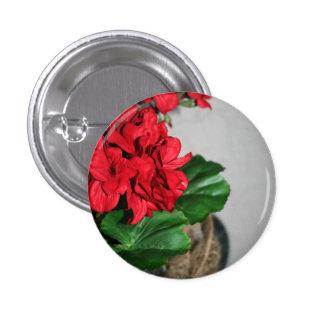 Happy Geraniums Pinback Button