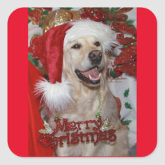 Happy Golden Retriever at Christmas Square Sticker at Zazzle