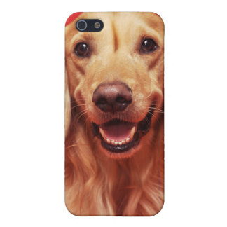 Happy Golden Retriever Covers For iPhone 5