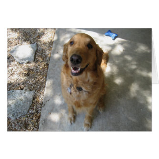 Happy Golden Retriever Greeting Card