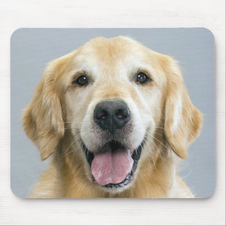 Happy Golden Retriever Puppy Dog Blue Mousepad