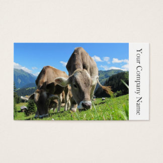 Happy Grazing Cows Photograph - Business Card