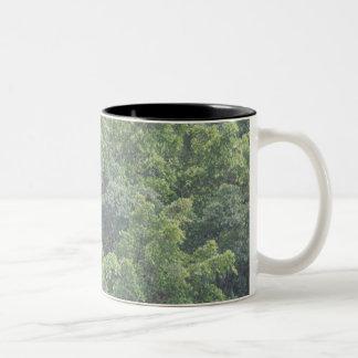 HAPPY green Two-Tone Coffee Mug