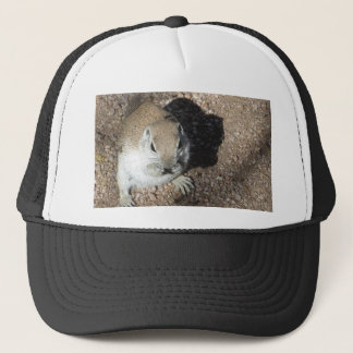 Happy Ground Squirrel Trucker Hat