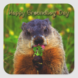 Happy Groundhog Day Eating Flower Stickers