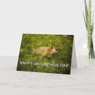 Groundhog day cards greeting photo cards zazzle happy groundhog day greeting card m4hsunfo