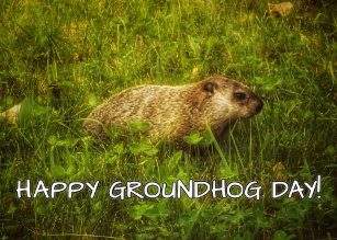 Groundhog day cards greeting photo cards zazzle happy groundhog day greeting card m4hsunfo Choice Image