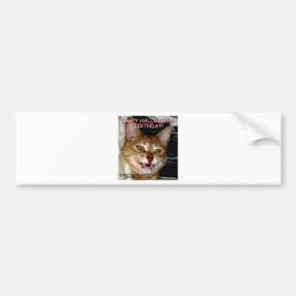 HAPPY HALLOWEEN AND BIRTHDAY VAMPIRE CAT BUMPER STICKER