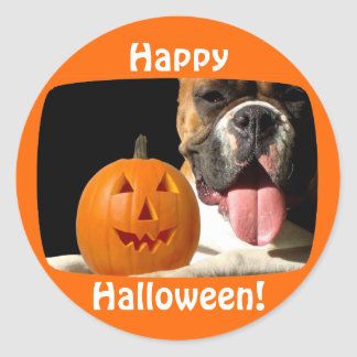 Happy Halloween Boxer stickers