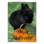Happy Halloween Bunny Greeting Card