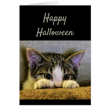 Halloween Themed Happy Halloween Cute Scared Kitten Funny Card