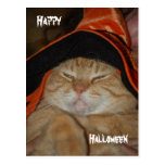 Happy Halloween-Post Card