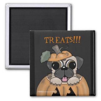 Happy Halloween-Pug in Jack O' Lantern 2 Inch Square Magnet