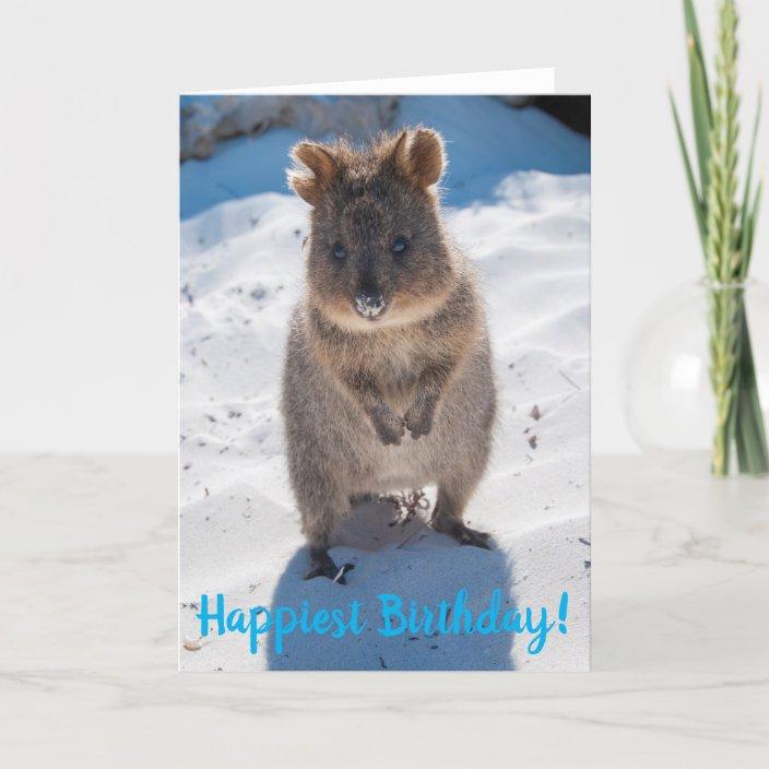 Happy Happiest Birthday Quokka Card | Zazzle.com