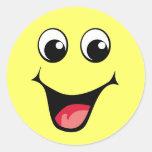 Happy hApPy HAPPY HAPPAY! Classic Round Sticker