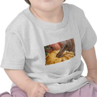 Happy Harvest! Tee Shirt