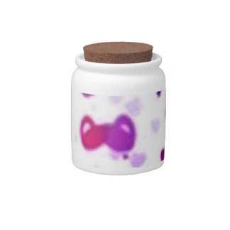 Happy Hearts Holiday Love Surprise Candy Jars
