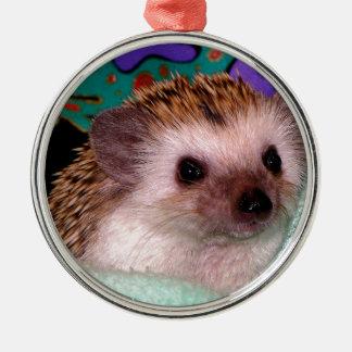 Happy Hedgehog Metal Ornament
