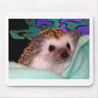 Happy Hedgehog Mouse Pad