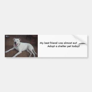 Happy Henry, My best friend was almost euthaniz... Car Bumper Sticker
