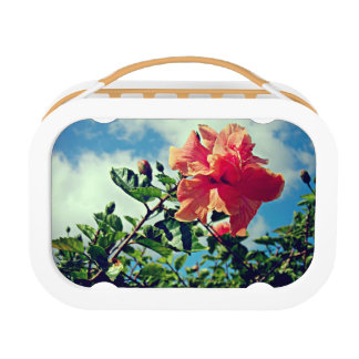 Happy Hibiscus Lunch Box