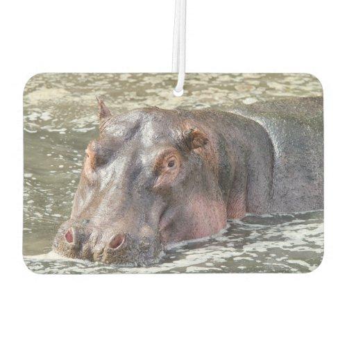 Happy Hippo Air Freshener