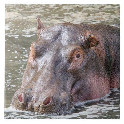 Happy Hippo Ceramic Tile