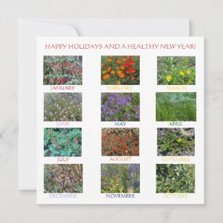 HAPPY HOLIDAYS AND A HEALTHY NEW YEAR! Note Card
