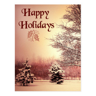 Happy Holidays beautiful winter landscape Postcard