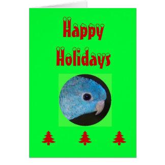 Happy Holidays card, linnie parakeet Card