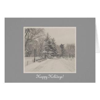 Happy Holidays - Central Park Snow Card